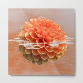Floating Dahlia Flower Metal Print