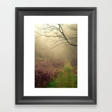 Mindfulness in Nature Framed Art Print