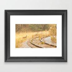 Look Before Crossing Framed Art Print