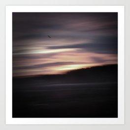 Evening shadows Art Print