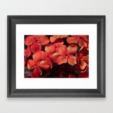 shiny flowers Framed Art Print