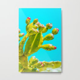 Cactus, Cacti, Bright, Colorful, Bloom, Botanical, Desert, Plant, Grow, Flower, Cactus Lover, Metal Print