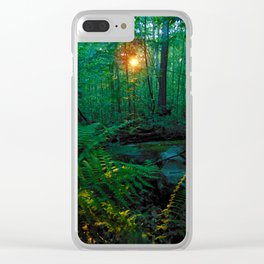 Sunkissed Forest Clear iPhone Case