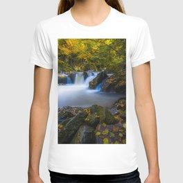 virginia creeper creek junction during autumn T-shirt