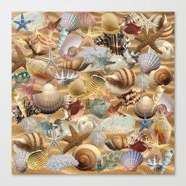 Sea Shell Mania Canvas Print