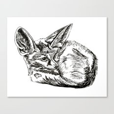 Little Fennec Fox Canvas Print
