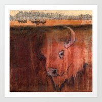 bison Art Prints featuring Bison by Pat Butler
