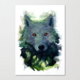 Sorin Canvas Print