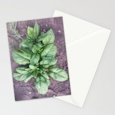 Khren. Russian rare plant, presage of love and happiness. Stationery Cards
