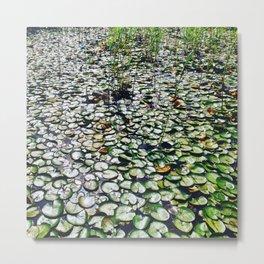 Green water flowers 1/3 Metal Print