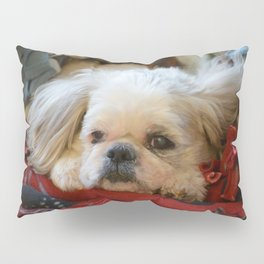 Denali - Loyal Lap-Dog Pillow Sham