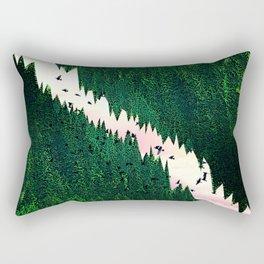 There is a light Rectangular Pillow