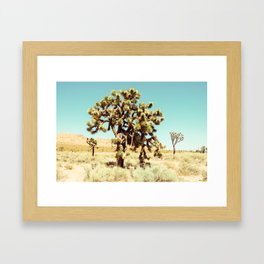 Joshua Trees in the California Desert Framed Art Print
