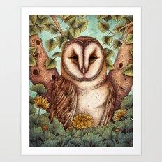 Spring Barn Owl Art Print