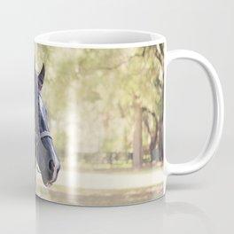 Stunning Gypsy Vanner in Color Coffee Mug
