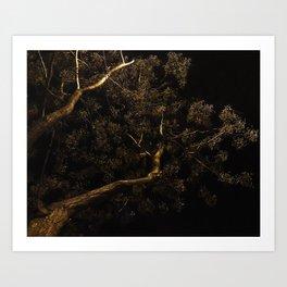 moonlight tree I Art Print
