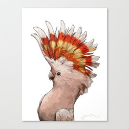 Pink Cockatoo Canvas Print