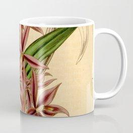 Barkeria skinneri Coffee Mug