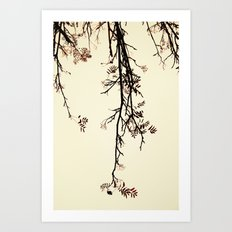 Delicate like rain Art Print