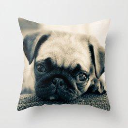 Puppy Pug Throw Pillow