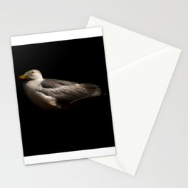 Herring Gull Stationery Cards
