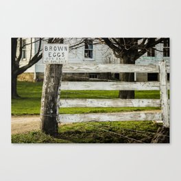 Brown Eggs for Sale Canvas Print
