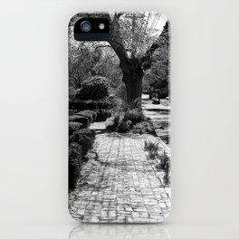 The Beaten Path iPhone Case