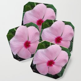 Simplicity in a Pink Flower Coaster