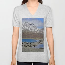 Fur Seals, King Penguins and Snowy Mountains Unisex V-Neck