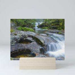 Waterfalls in wild forest Mini Art Print