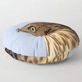 Watercolor Bird, Cooper's Hawk 01, Estes Park, Colorado, Modern Gargoyle Floor Pillow