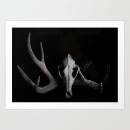 Skull and Antlers Art Print