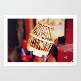 Caged cricket Art Print