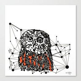 the Owl Canvas Print