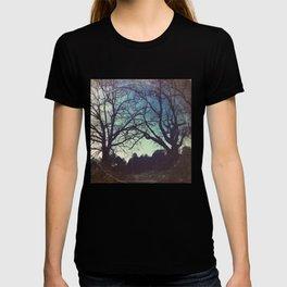Long Road Home - America As Vintage Album Art T-shirt