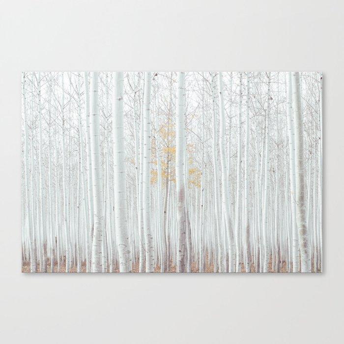 Pale Forest Canvas Print