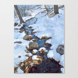 Weir brook Canvas Print