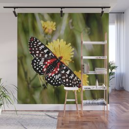A Red Dotted Checkerspot Wall Mural