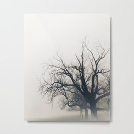 In The Mist Metal Print