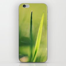 Spring Green iPhone & iPod Skin