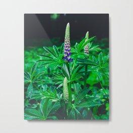Growth Metal Print