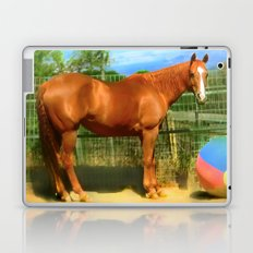 A Horse and Her Ball Laptop & iPad Skin
