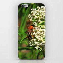 Wasp 1795 iPhone Skin