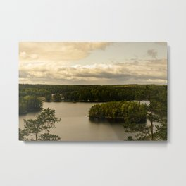 Forest and lake Metal Print
