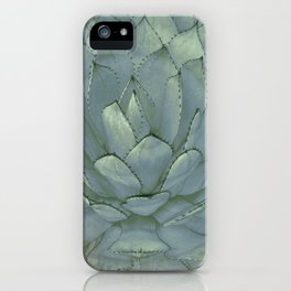 Agave Succulent Cactus iPhone Case