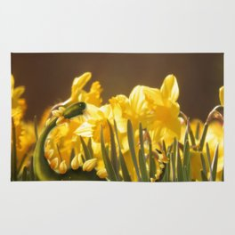 The Daffodil nommer Rug