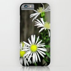 Daisy Chain Slim Case iPhone 6s