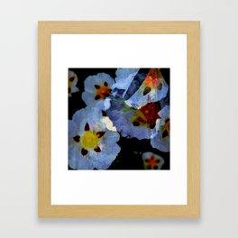 Esteva - Cistus Framed Art Print