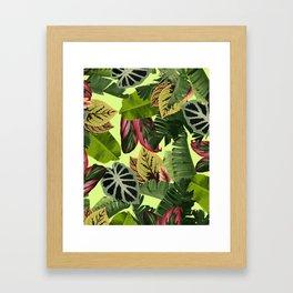 El Yunque Framed Art Print