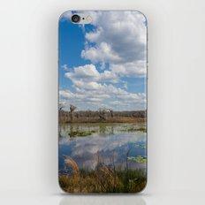 Florida iPhone & iPod Skin